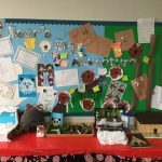 Our brilliant bear work
